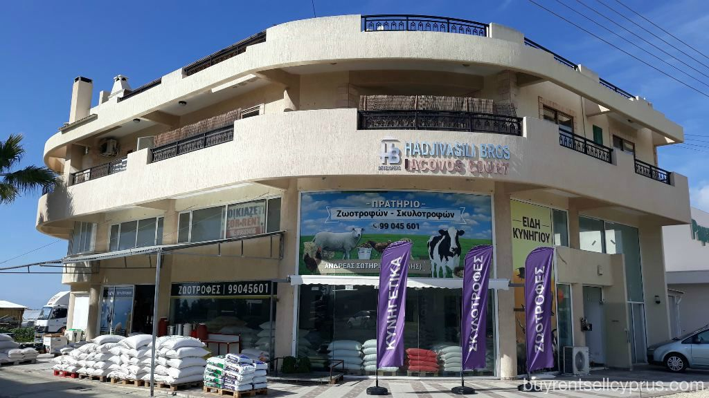 Paphos Showroom - Commercial For Rent